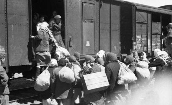 deportari